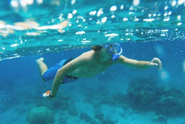 act-snorkeling